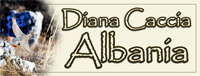 Diana Caccia Albania