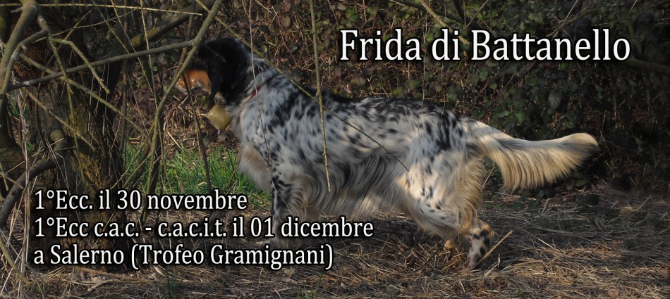 Frida di Ildo Battanello
