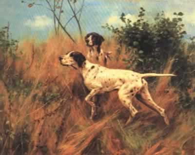 pointer-in-the-field-thomas-blink